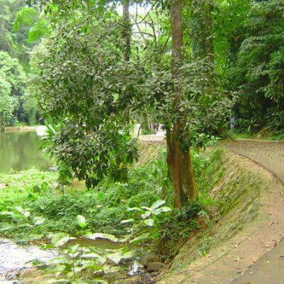 Водопад Тон Сай на Пхукете