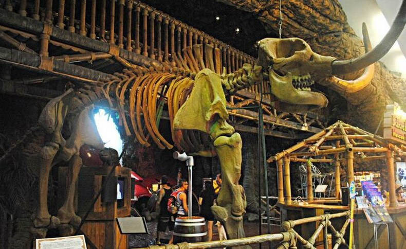 Музей Рипли в Паттайе - скелет мамонта
