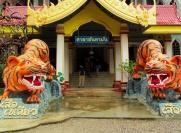 Храм тигров в Краби