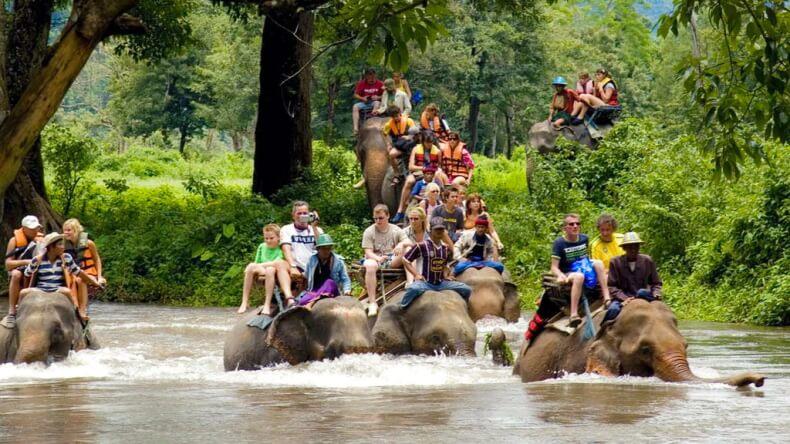 Прогулка на слонах в Хуа Хине