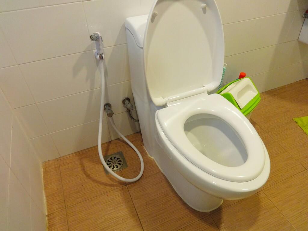 Секс а туалет 7 фотография