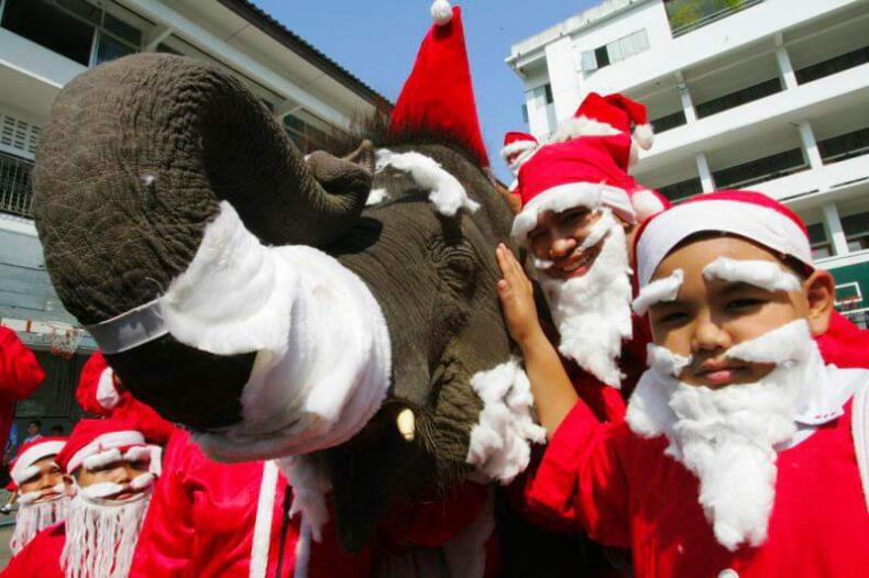 Европейский Новый год в Таиланде