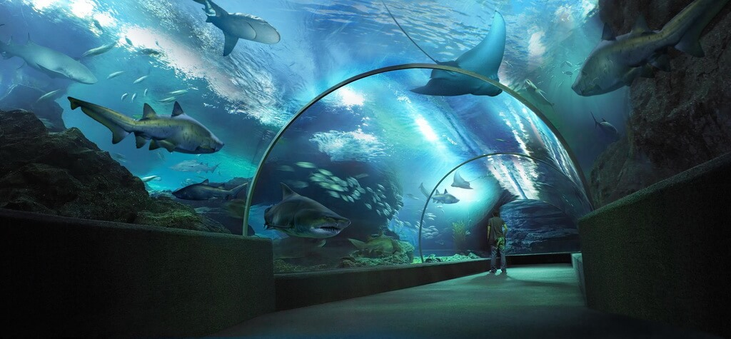 океанариум в бангкоке фото