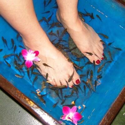 Массаж рыбками в Тайланде