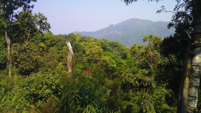 Национальный парк Kaeng Krachan в Хуа Хине
