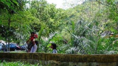 Территория зоопарка Кхао Кхео в Паттайе