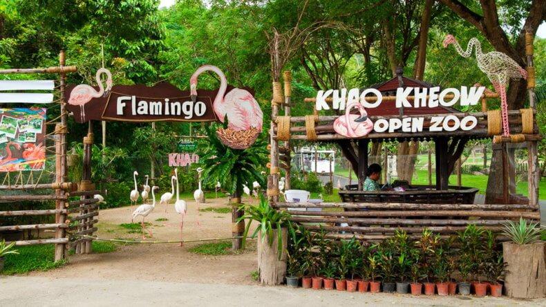 Экскурсия в зоопарк Кхао Кхео Паттайи
