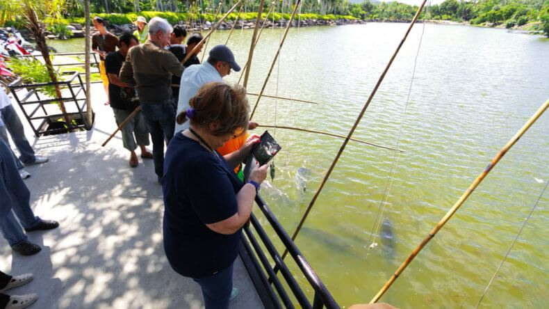 Ловля рыбы в парке Нонг Нуч