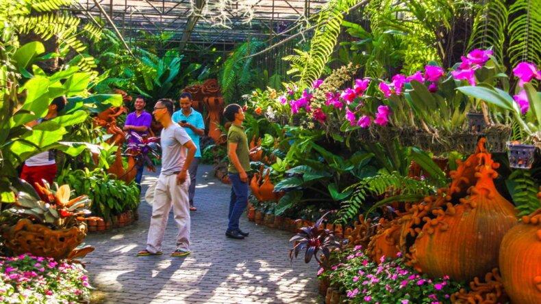 Сад орхидей в парке Нонг Нуч