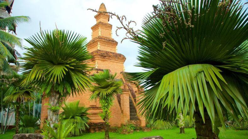 Сад пальм и папоротников в парке Нонг Нуч