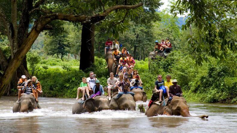 Катание на слонах в Тайланде