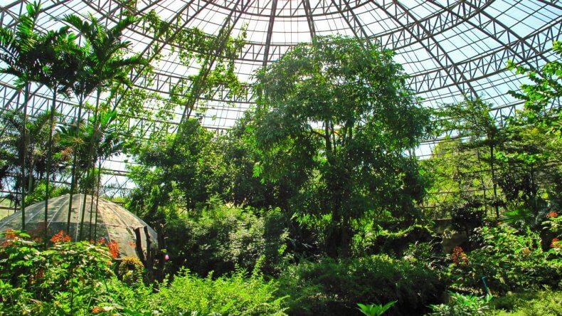 Парк бабочек в Бангкоке