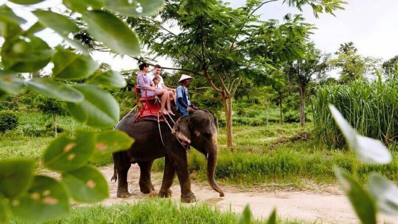 Катание на слонах в сафари-парке Намуанг на Самуи